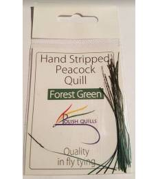 Peacock quill forest green